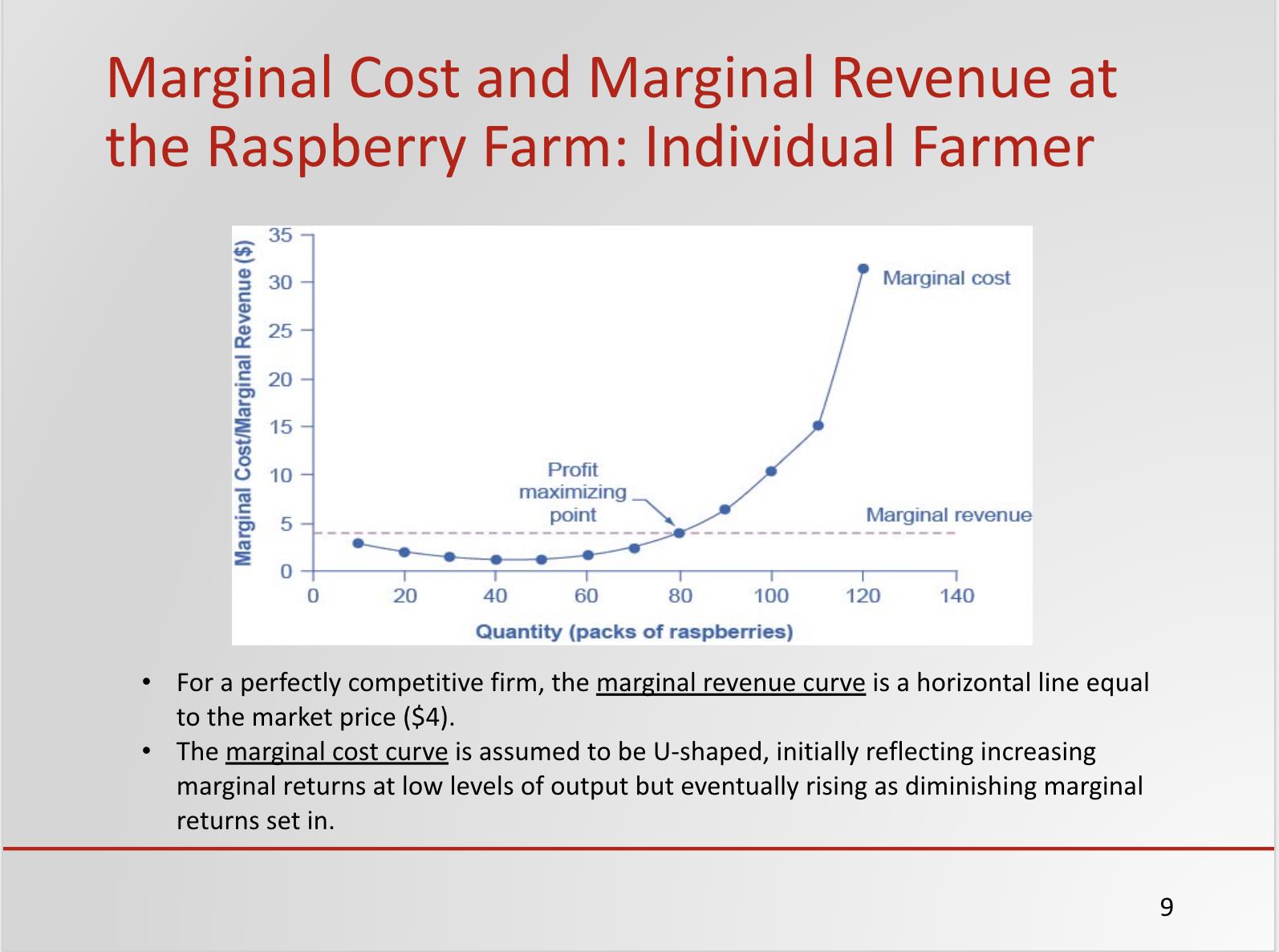 Profit Maximization in Competitive Markets Sample Slide