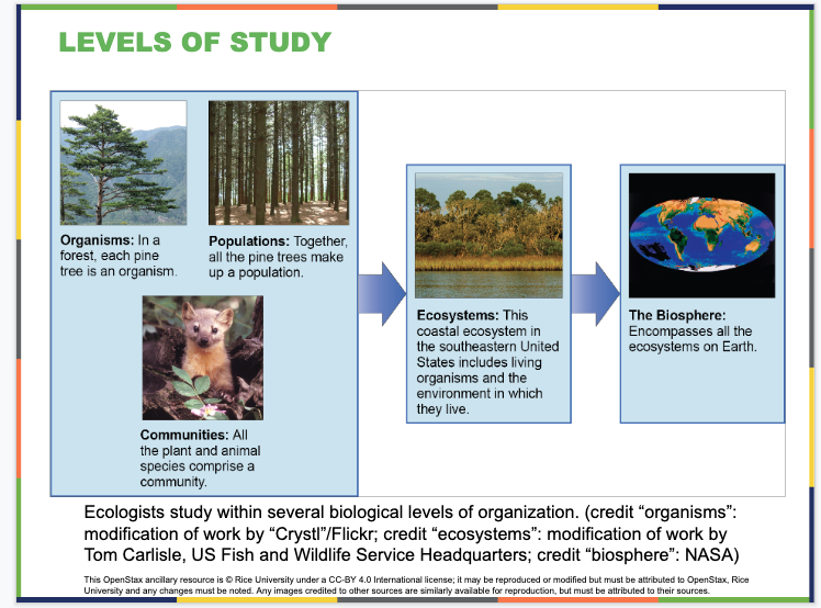 Ecology and the Biosphere Slide
