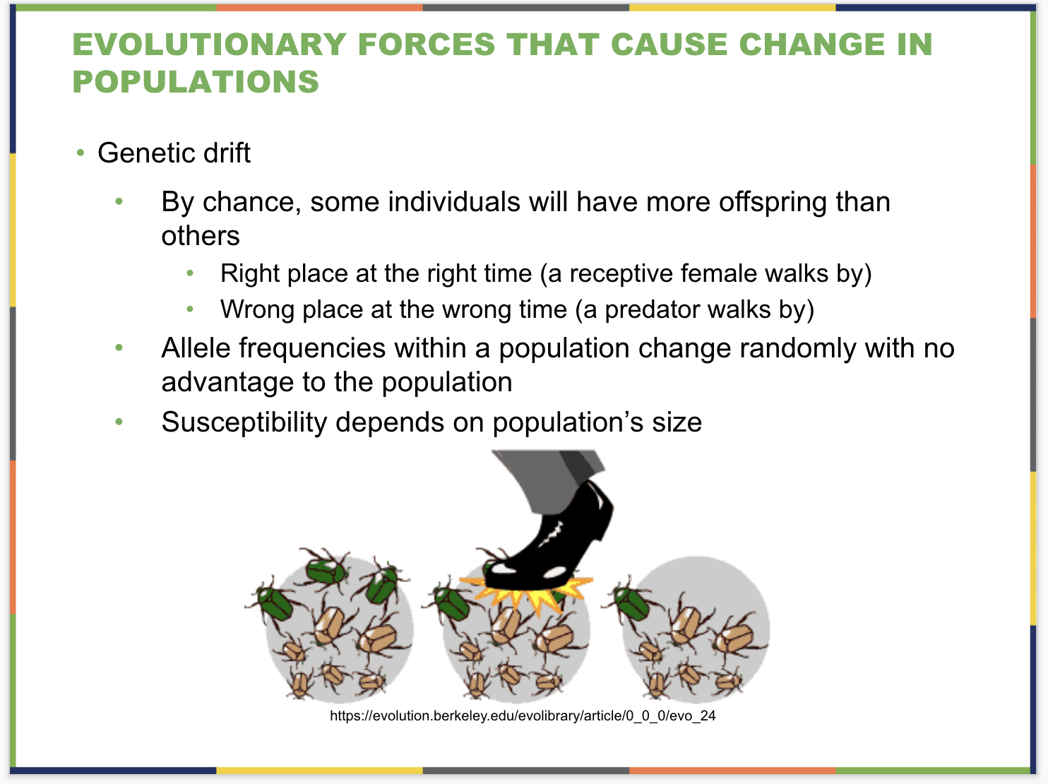 Evolution of Populations Slide