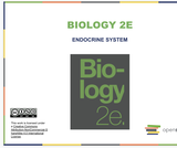 Biology II Course Content, The Endocrine System, The Endocrine System Resources