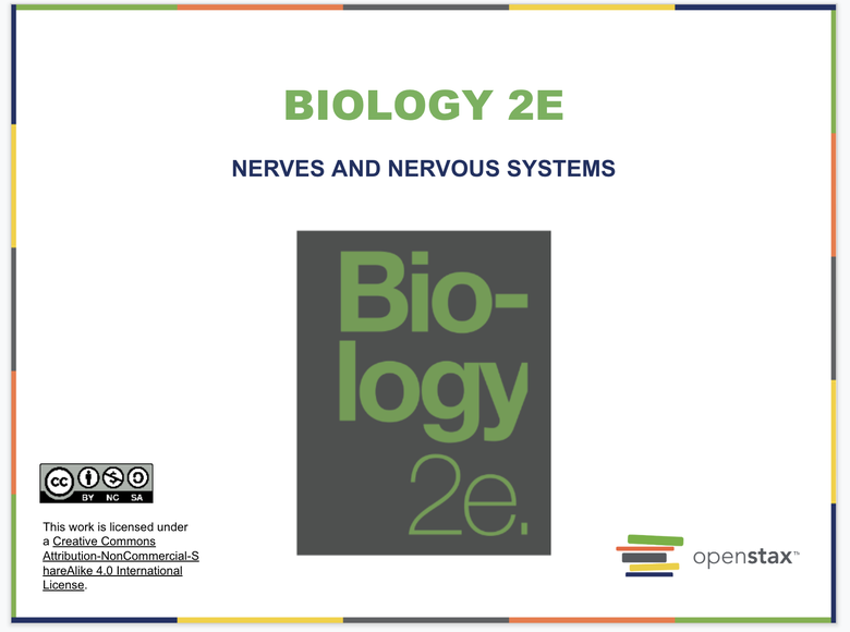 The Nervous System Resources