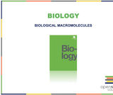 Biology I Course Content, Biological Macromolecules, Biological Macromolecules Resources