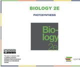 Biology I Course Content, Photosynthesis Introduction, Photosynthesis Introduction Resources