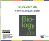 Biology II Course Content, The Musculoskeletal System, The Musculoskeletal System Resources